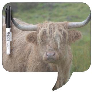 Shaggy Blonde Highland Cow Dry Erase Board