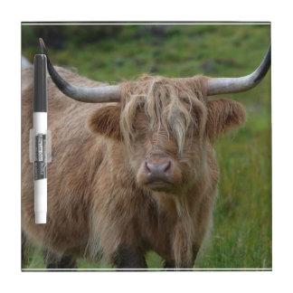 Shaggy Blonde Highland Cow Dry Erase Whiteboard