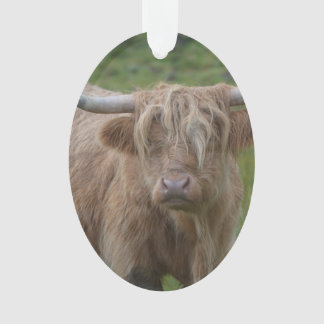 Shaggy Blonde Highland Cow Ornament