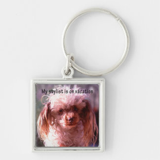 Shaggy Hair Dog Silver-Colored Square Keychain