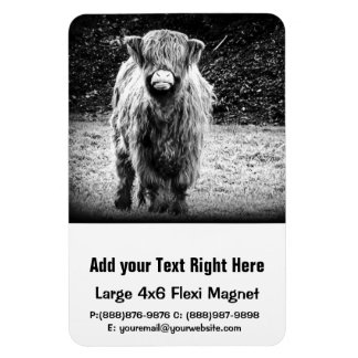 Shaggy Highland Cow Photo (Black & White) Magnet
