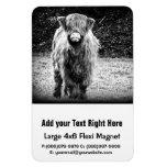 Shaggy Highland Cow Photo (Black & White) Rectangular Magnets