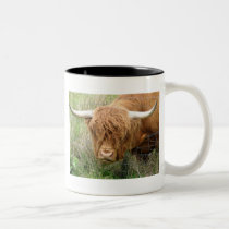 Shaggy Highland Cow Two-Tone Coffee Mug