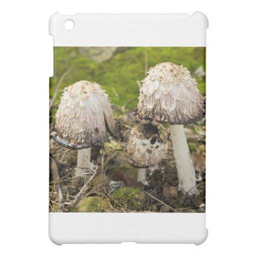 Shaggy mane 1 iPad mini covers