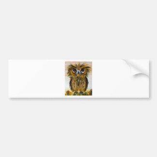 Shaggy owl big eyed wildlife car bumper sticker
