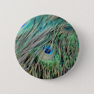 Shaggy Peacock Eye Feathers Pinback Button