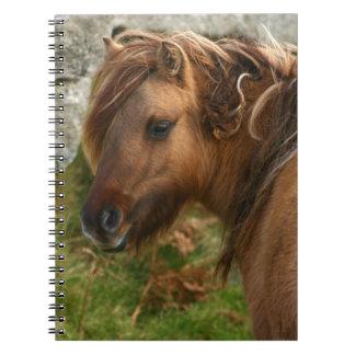 Shaggy Pony Spiral Notebook