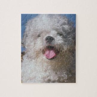 Shaggy Poodle Dog Puzzle