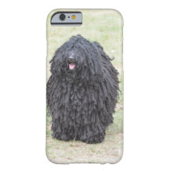 Case-Mate Barely There iPhone 6 Case with Puli Phone Cases design