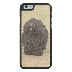 Carved ® iPhone 6 Bumper Wood Case with Puli Phone Cases design