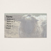 Shaggy Sheep Business Card