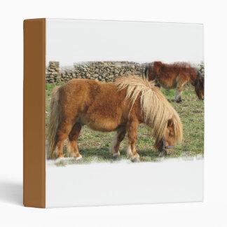 Shaggy Shetland Pony Binder