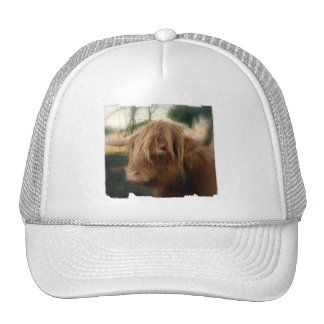 Shaggy Yak  Baseball Hat
