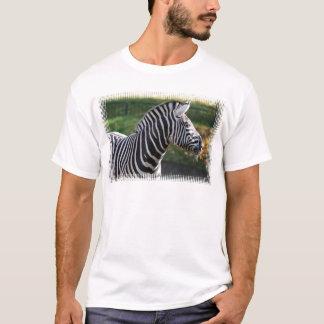 Shaggy Zebra T-Shirt