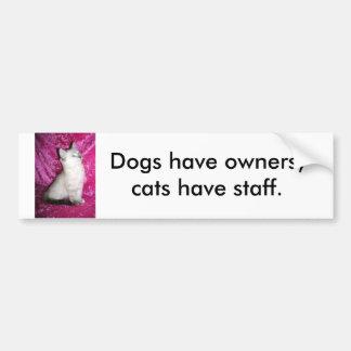 Shai Bumper Sticker