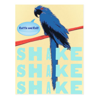 Shake Rattle and Roll Macaw Postcard