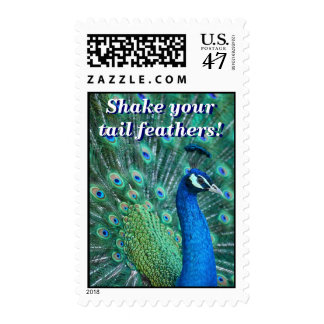 Shake Your Tail Feathers Stamp