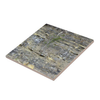 Shale outcrop ceramic tile
