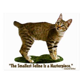 Shallest Feline is a Masterpiece Postcard