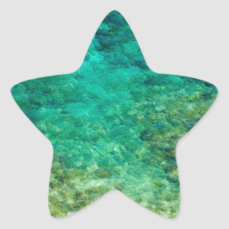 Shallow clear water with coral star sticker