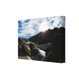 Shallow Pond Canvas Print