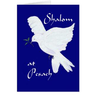 ¡Shalom en Pesach! - Paloma blanca de la paz Tarjeta De Felicitación