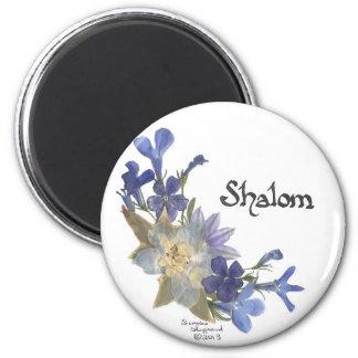Shalom Fridge Magnets