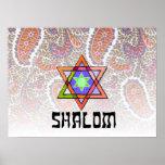 Shalom Paisley rosada Poster