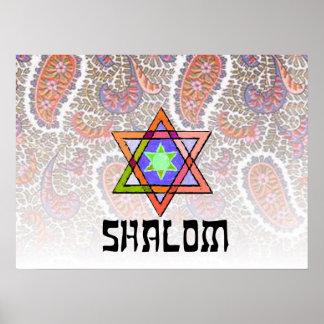 Shalom Pink Paisley Poster