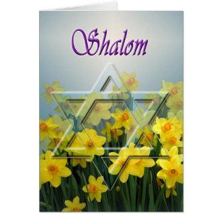 Shalom - tarjeta del Passover con la estrella de D