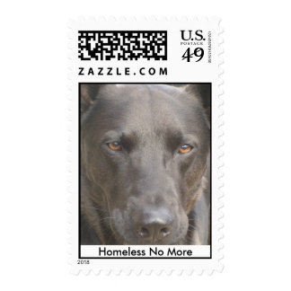 Shaman (fka Shadow), Homeless No More Postage Stamps