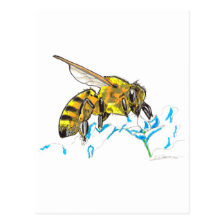 Shamanic Spirit of Bee Postcard