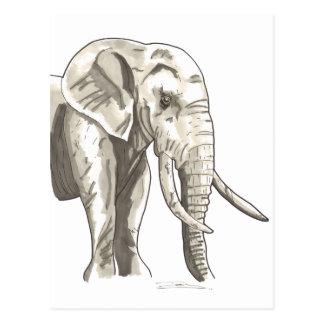 Shamanic Spirit of Elephant Postcard