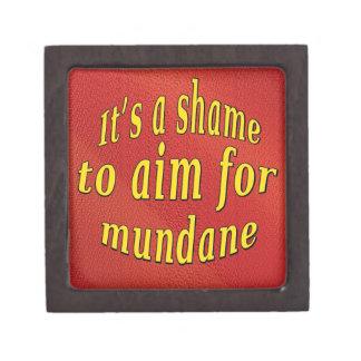 Shame to be Mundane Jewelry Box