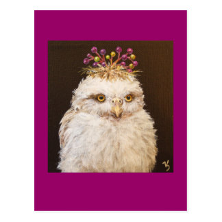 shameena the owlet postcard