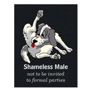 Shameless Male Postcard