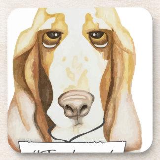 Shaming el perro Basset Hound Posavaso