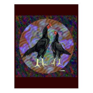 Shamo:  Black Pair Postcard