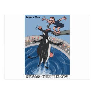 Shamooo Funny Cow Gifts & Collectibles Postcard