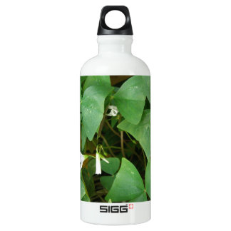 Shamrock 01 aluminum water bottle