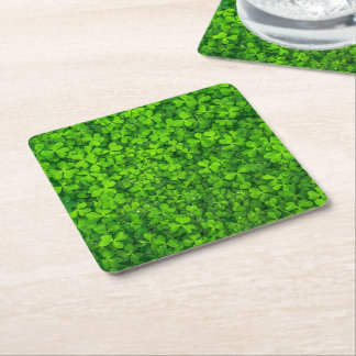 Shamrock Clovers Photography Irish Saint Patrick Square Paper Coaster