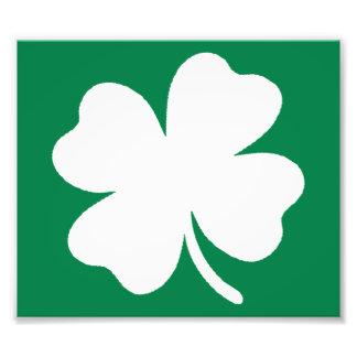 Shamrock  St Patricks Day Ireland Photographic Print