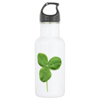 Shamrock Stainless Steel Water Bottle