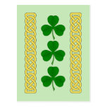 Shamrock Trio and Knotwork Bands Postcard