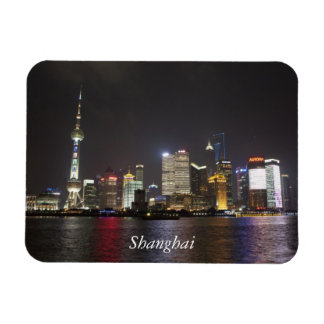 Shanghai PuDong, China Rectangular Photo Magnet