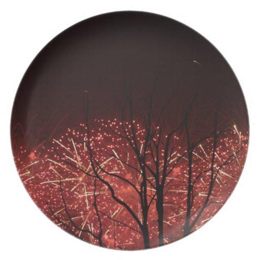 Shanghai Worlds Fair Fireworks Dinner Plates
