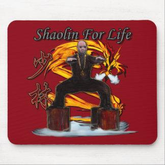 Shaolin Dragon Monk Mouse Pad