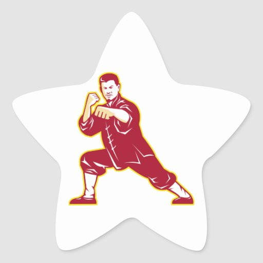 Shaolin Kung Fu Martial Arts Master Retro Star Stickers