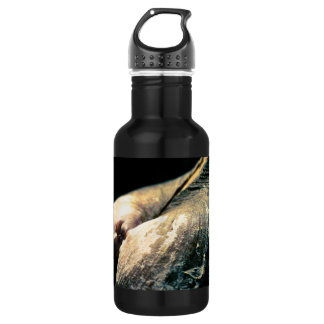 Shapes of Nature Stainless Steel Water Bottle