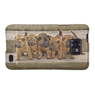 Shar-Pei 4 perritos de la semana el tiro imposible Samsung Galaxy SII Fundas